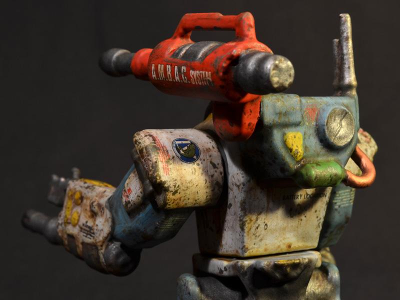 nimble-tortoise-prhi-07