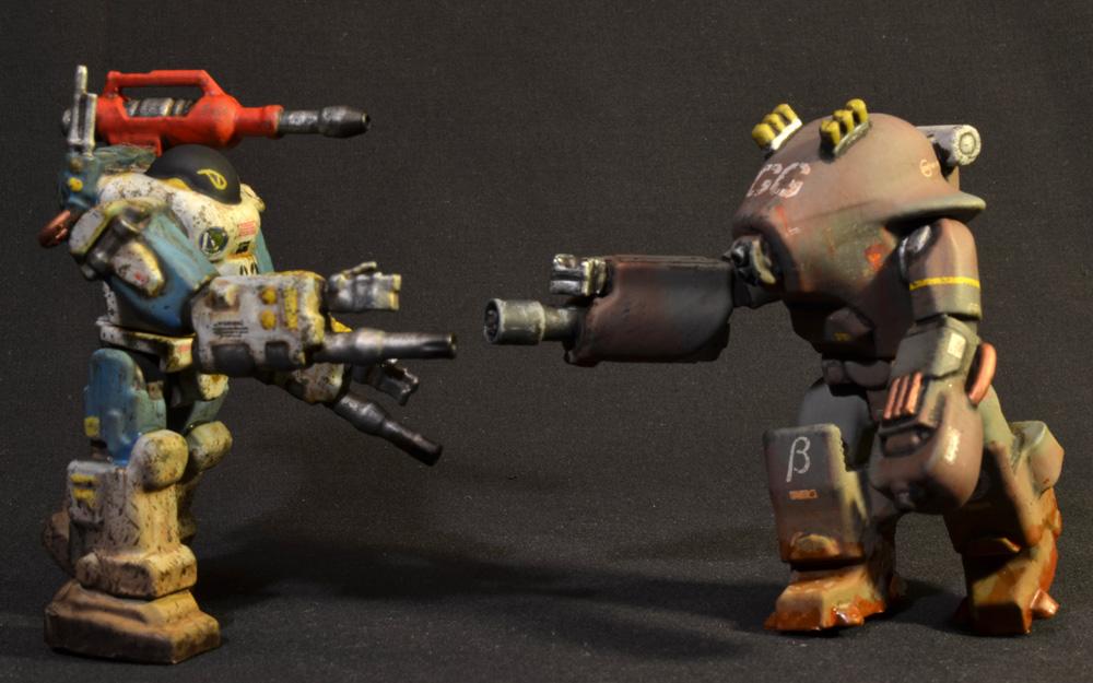 nimble-tortoise-prhi-12