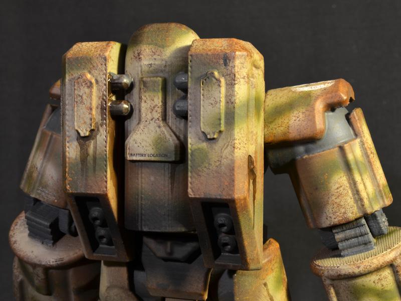 FF-sierra-bouncetortoise-08