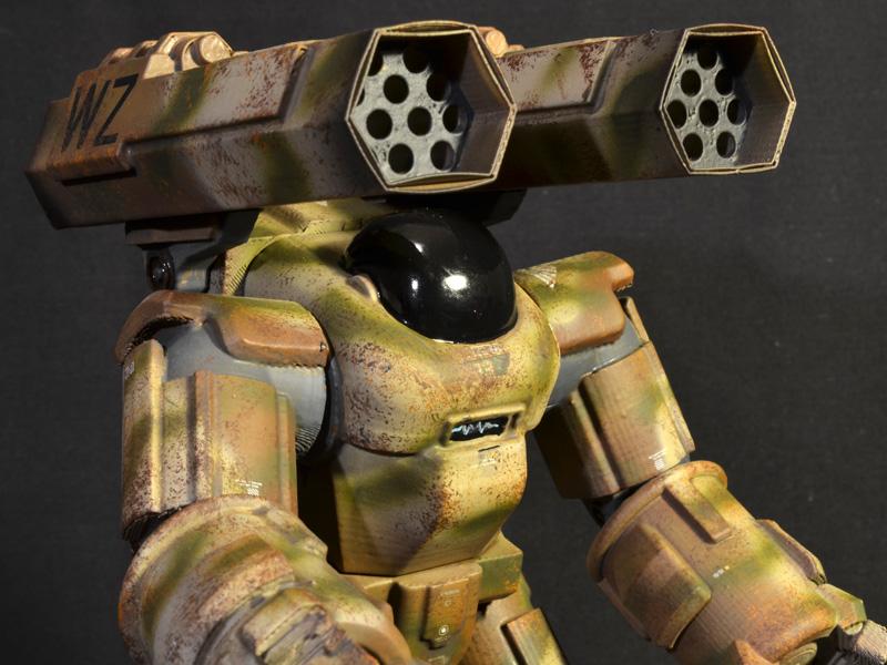ff-sierra-striketortoise-04